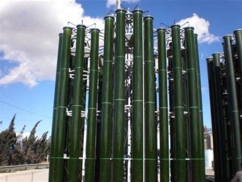 Algenzucht Photobioreaktor, Algenfarm